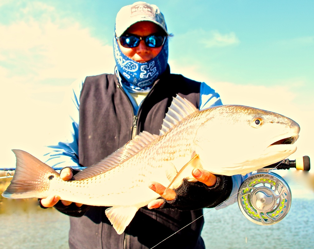 Hilton Head Redfish